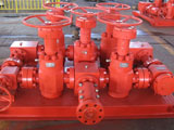 Manifold Industry
